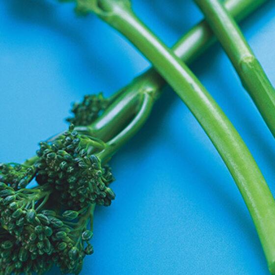 Bimi® Brócolos Fervido